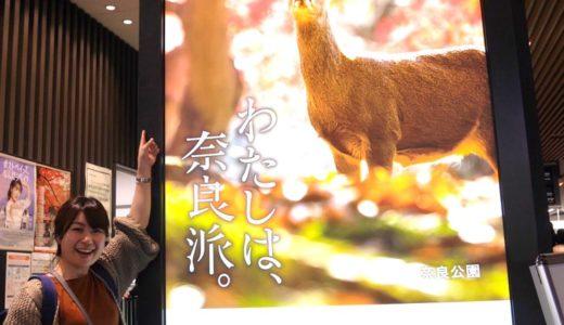 写真家 川上悠介氏の作品が、近鉄プロモーションポスター「わたしは、奈良派」に採用