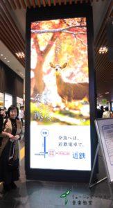 わたしは、奈良派in京都
